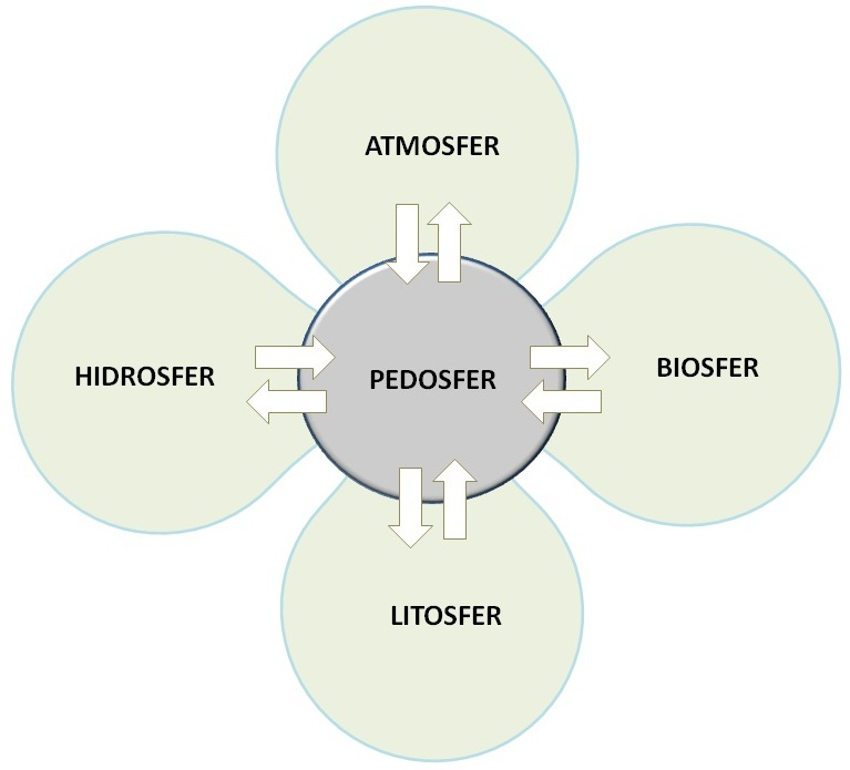 Pedosfer